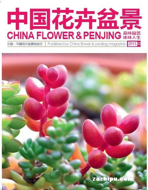 花卉12月期封面