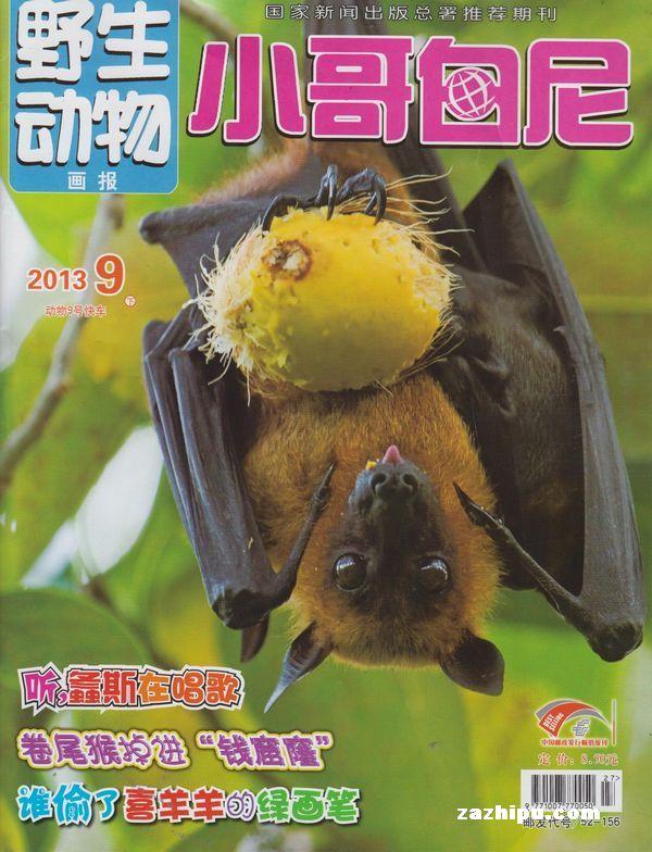小哥白尼野生动物画报2013年9月期