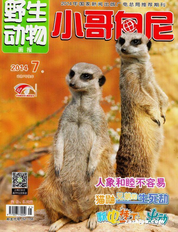 小哥白尼野生动物画报2014年7月期封面图片-杂志铺.