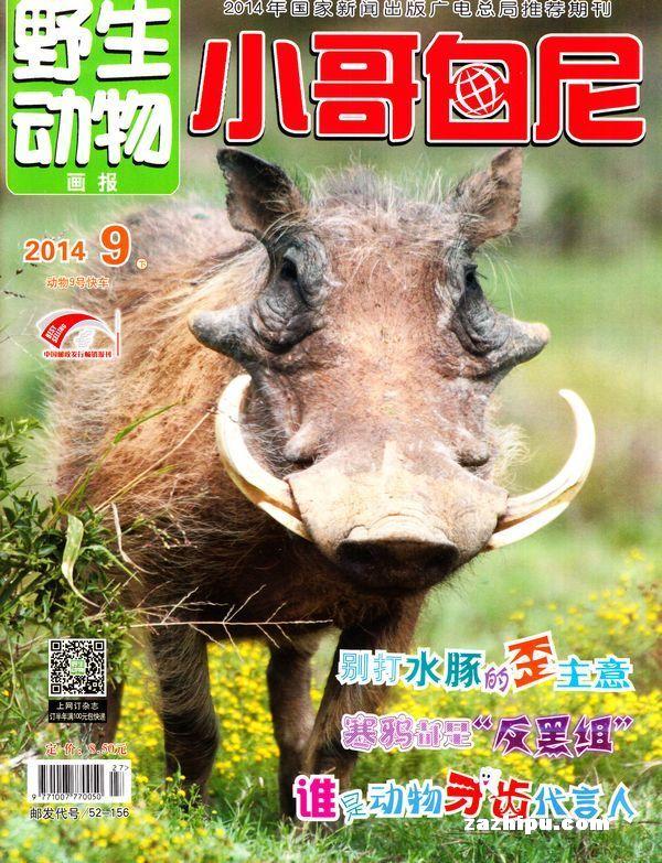小哥白尼野生动物画报2014年9月期封面图片-杂志铺