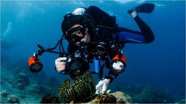 《中国国家地理》探秘海洋深处