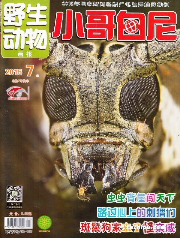 小哥白尼野生动物画报2015年7月期封面图片-杂志铺.