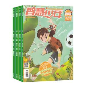 智慧少年益智画刊(1年共12期)(大发极速3d开奖订阅)