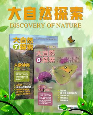 大自然探索(1年共12期)(杂志订?#27169;?><span class=