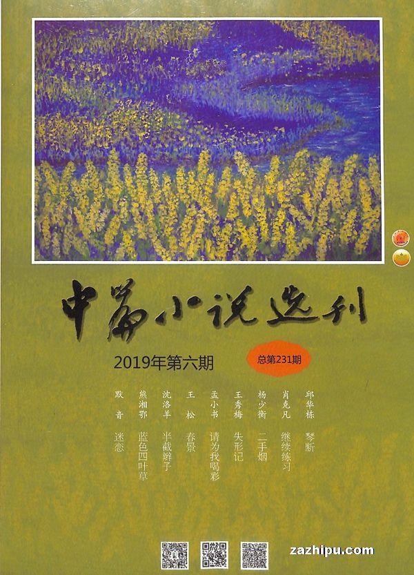 中篇小说选刊2019年11月期