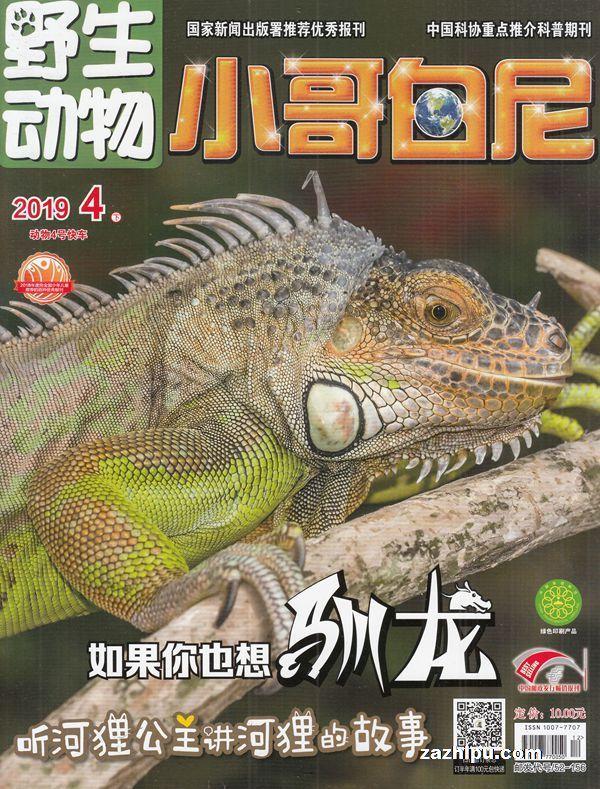 野生动物(小哥白尼)2019年4月期
