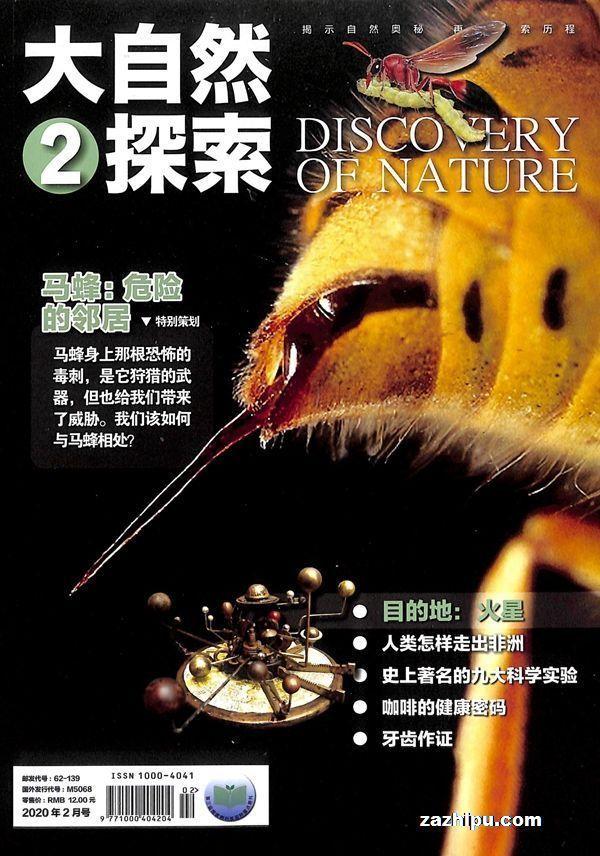 大自然探索2020年2月期