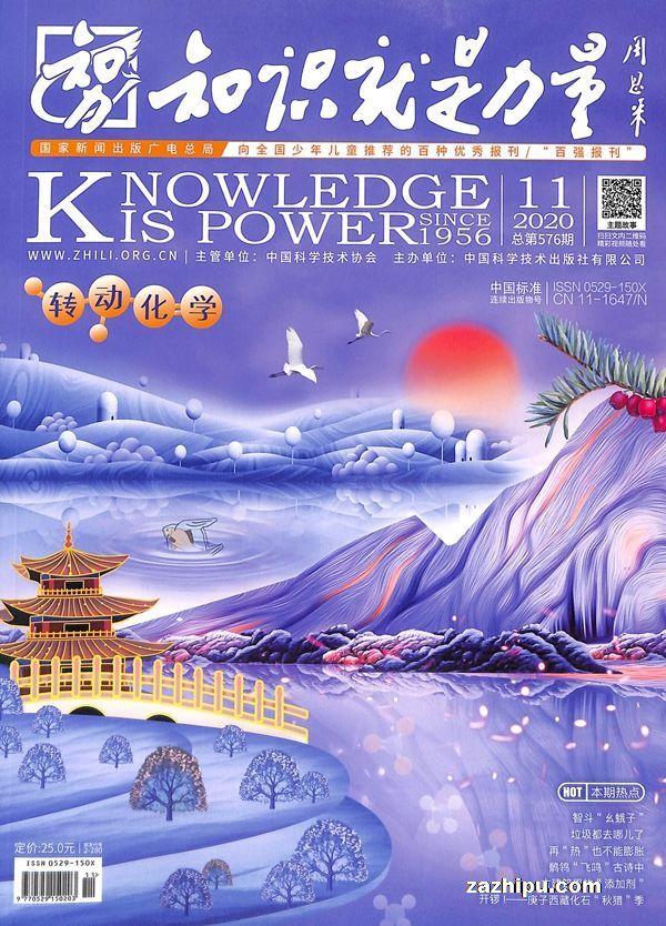 知识就是力量2020年11月期