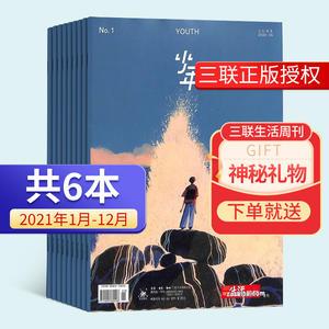 少年(三联青少刊)(1年共6期)杂志订阅