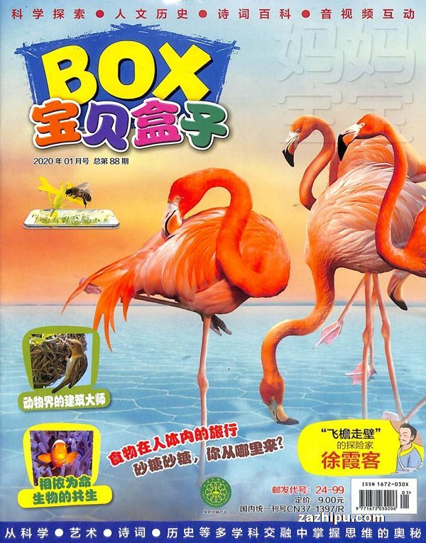 宝贝盒子2020年1月期