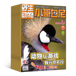 小哥白尼野生動物畫報(1年共12期)(雜志訂閱)