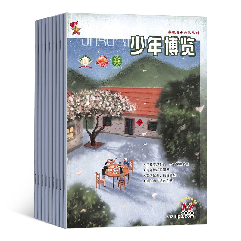 少年博览小学中高年级(1年共12期)(杂志订阅)