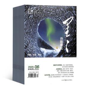 星星诗刊诗歌理论(中旬刊)(1年共12期)(杂志订阅)