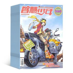 智慧少年益智畫刊(1年共12期)(雜志訂閱)