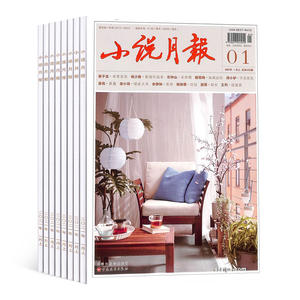 小说月报(1年共12期)(杂志订阅)