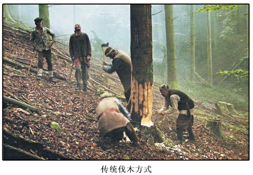 传统伐木方式
