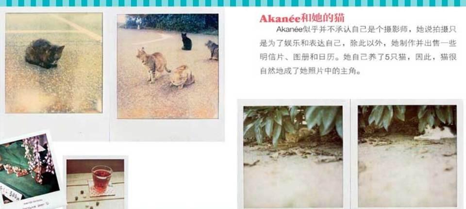 Akannee和她的猫