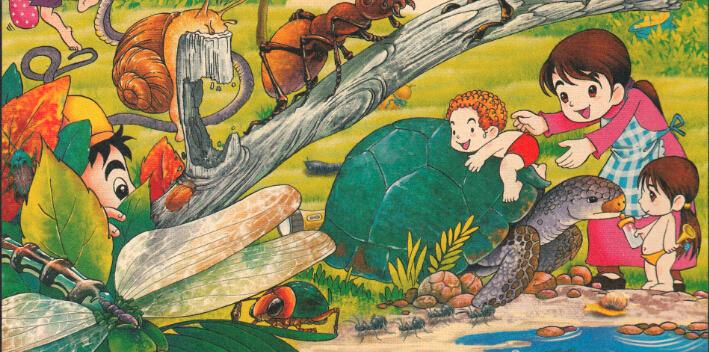 奇异的镜像世界 陆地上最大的龟:象龟是陆生龟类中最大的一种,以腿粗