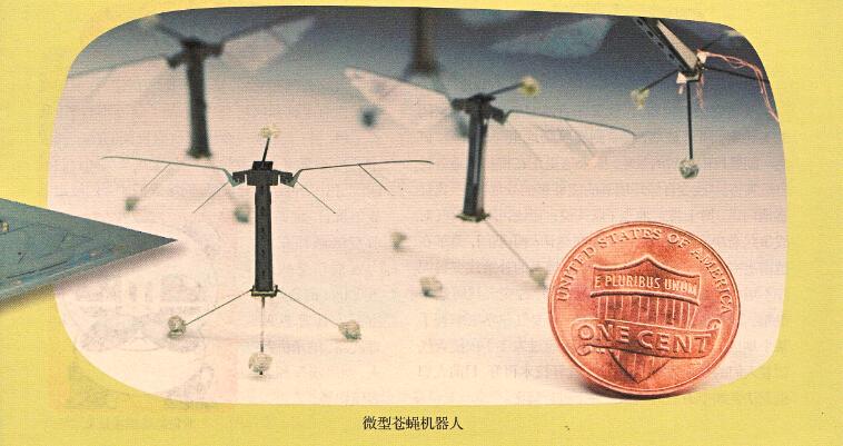微型苍蝇机器人