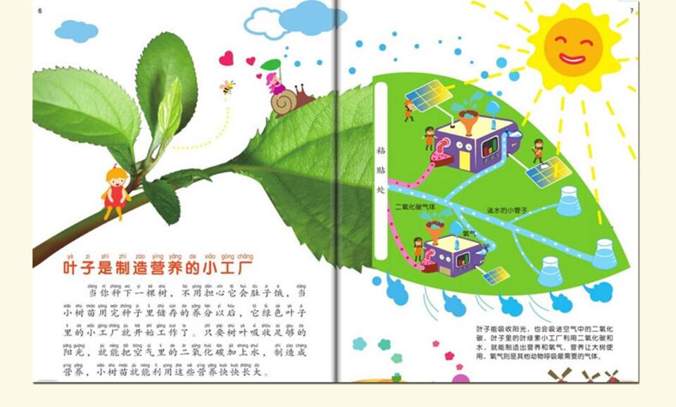 叶子是制造营养的小工厂