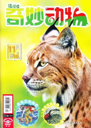 学生杂志封面素材
