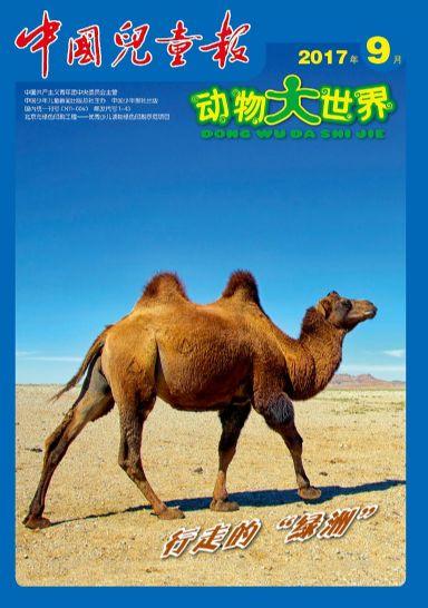 动物大世界9月封面