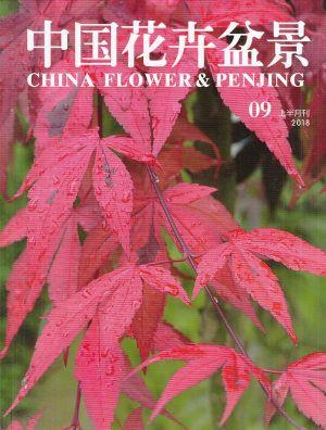 中国花卉盆景2018年9月期