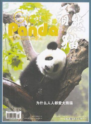 看熊猫2019年2月期