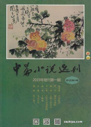 中篇小说选刊增刊2019年4月期