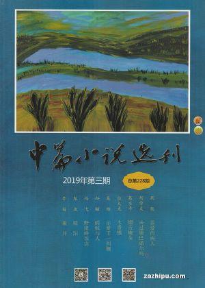 中篇小说选刊2019年5月期
