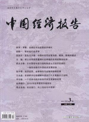 中国经济报告2019年5月期