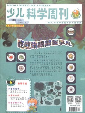 少儿科学周刊儿童版2019年11月期