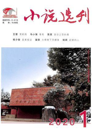 小说选刊2020年1月期