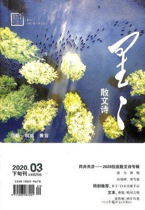 星星诗刊散文诗(下旬刊)2020年3月期