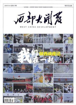 西部大开发2020年2-3月期