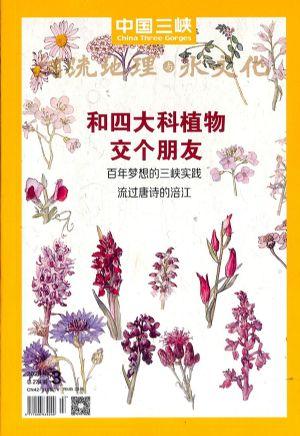 中国三峡河流地理与水文化2020年3月期