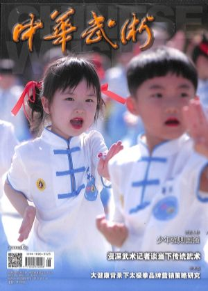 中华武术2020年6月期