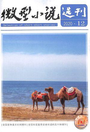 微型小说选刊2020年6月第2期