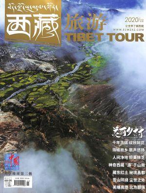西藏旅游2020年11月期