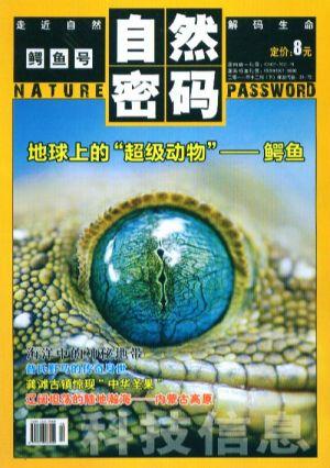 自然密码2011年12月期