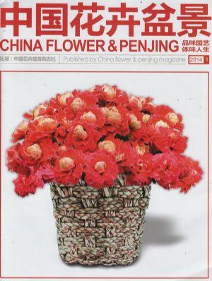 中国花卉盆景2014年1月期