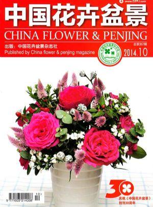 中国花卉盆景2014年10月期