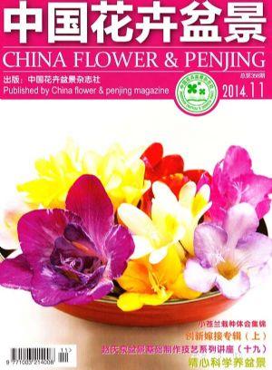 中国花卉盆景2014年11月期