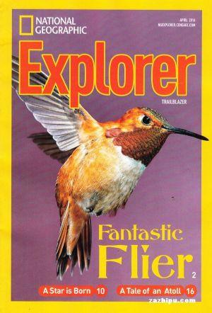 动物杂志封面图素材