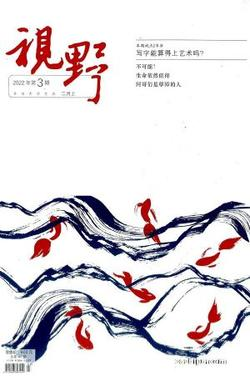 视野(1年共24期)(杂志订阅)