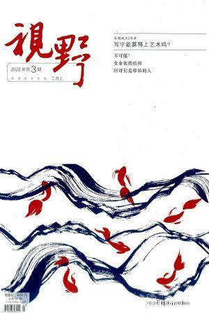 视野(1季度共6期)(杂志订阅)