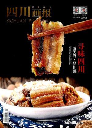 四川畫報(1季度共3期)(雜志訂閱)