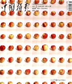 中国摄影(1年共12期)(龙8订阅)