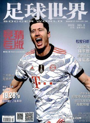 足球世界(1年共12期)(杂志订阅)