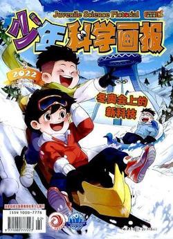 少年科学画报(1年共12期)(大发快3官方网订阅)